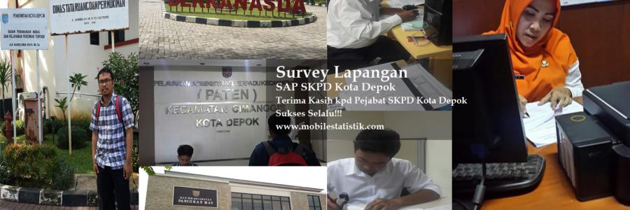 Survey Lapangan Perspektif Penerapan SAP di SKDP Kota Depok
