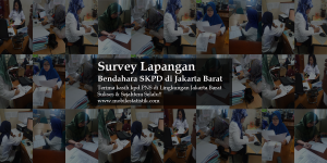 survey lapangan