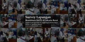 survey lapangan