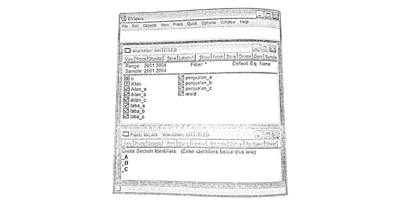 pool data, data panel, Eviews